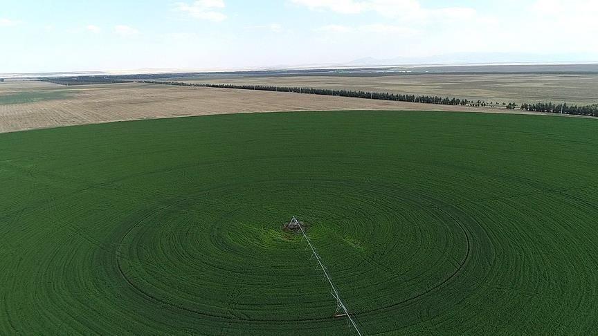 Tarım Arazilerine 23 Bin Başvuru!
