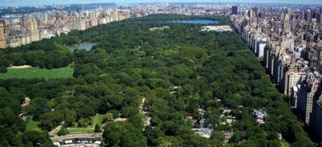 İstanbul'da iki dev şehir ormanı kurulacak