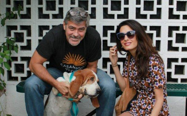 George Clooney'nin Görkemli Evi