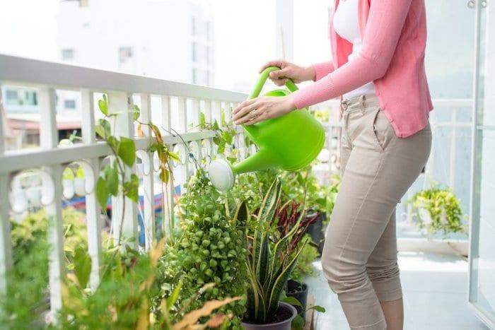 Balkon Bahçeciliği Nasıl Yapılır?