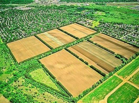 hektar-dönüm