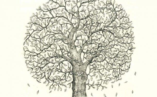 Soy Ağacı Nedir? Soy Ağacı Sorgulama Nasıl Yapılır?