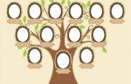 Soy Ağacı Nasıl Yapılır? Aile Soy Ağacı Nasıl Çizilir?