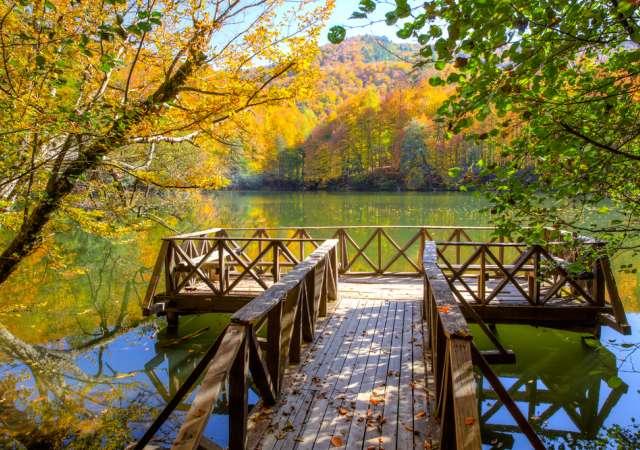 Yedigöller Nerededir? Yedigöller Milli Parkı Giriş Ücreti Ne Kadar?